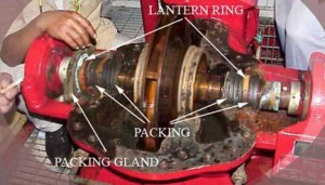 Gland Packing